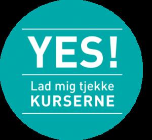 yes_knap2